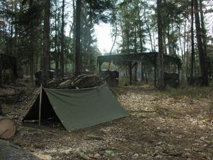 Jungle-camp spielfeld 3